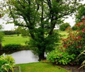 Jardinería Llebeig C.B.