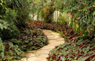 Podas y Jardines Mallorca