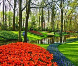 Jardín Cómodo